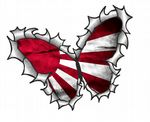 Ripped Torn Metal Butterfly Design With Japanese JDM Style Rising Sun Flag Motif External Vinyl Car Sticker 125x90mm
